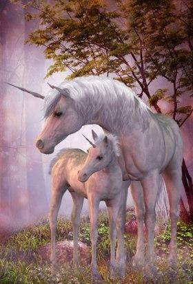 210736-sonar-unicornio